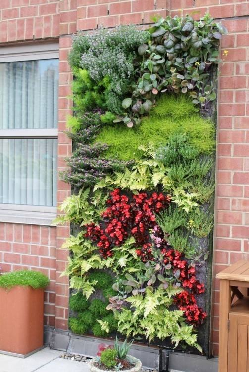 living wall planters outdoor plants