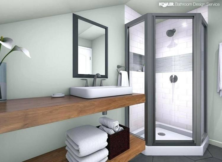 View In Gallery Perfect Bathroom Design Ideas Pakistan Again Img Button