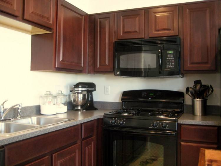 Full Size of Painted Kitchen Cabinets With Black Appliances Black Dreaming White Kitchen Cabinets Painted Black