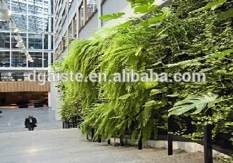 plants for living walls green walls woolly pocket display plants for exterior living walls