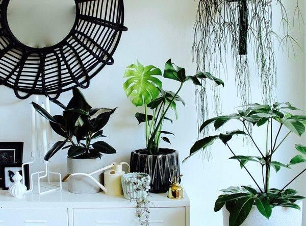 Garden Furniture Sets Outdoor Living Stores Near Me: Contemporary Outdoor Living Furniture Decorating